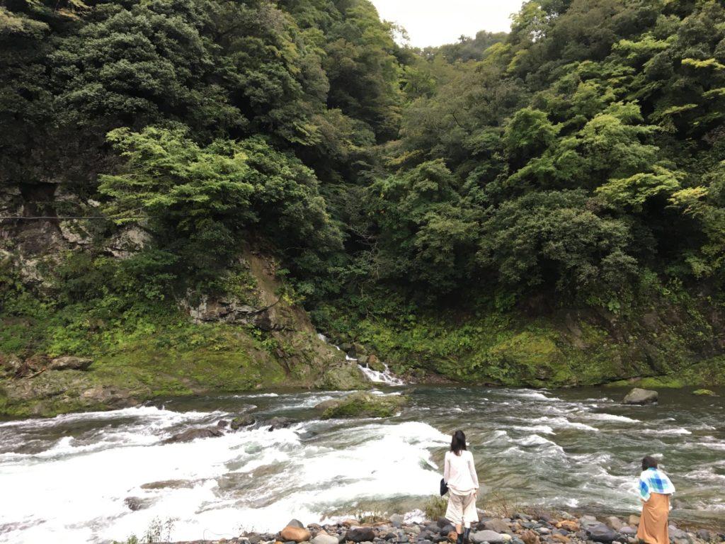 酵素作り・川